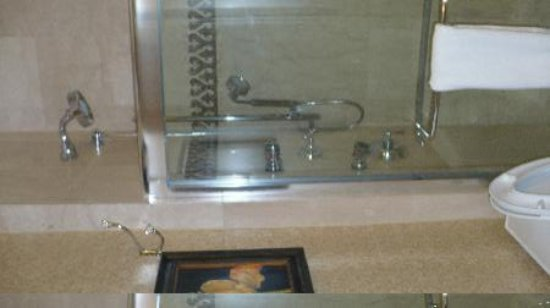 The Roosevelt New Orleans, A Waldorf Astoria Hotel: shower with multi heads!