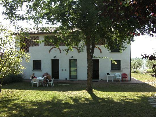 Agriturismo Spazzavento: the shady garden