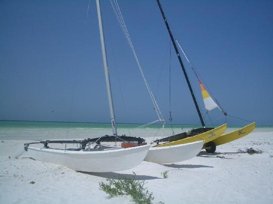 Holbox Hotel Casa las Tortugas - Petit Beach Hotel & Spa: catamaran sulla spiaggia