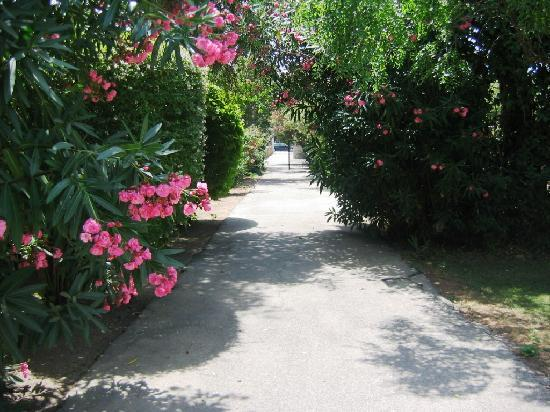Le Petit Nice: passage pour aller à la plage