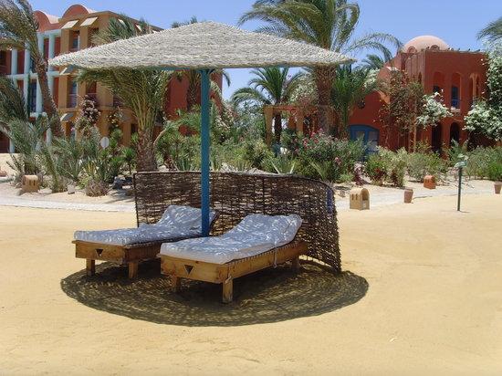 Sheraton Miramar Resort El Gouna: I want to go back!