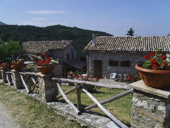 Agriturismo Bartoli: veduta agriturismo