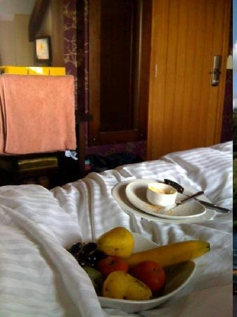 The Bear's Paw: Breakfast in Bed xxx