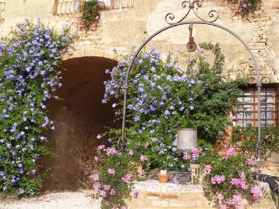 Agriturismo Marciano: flowers and well near front door