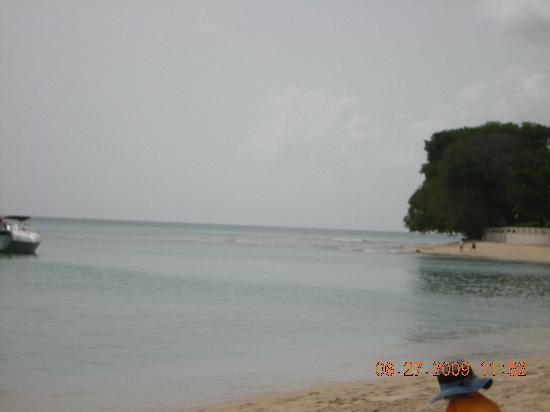 Paynes Bay Beach: Paynes Bay shore