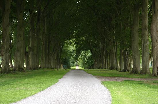 Colerne, UK: The Long Drive way