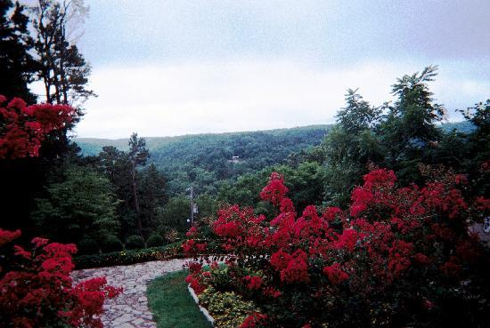 1886 Crescent Hotel & Spa : This is the wonderful view from the back porch of the Crescent
