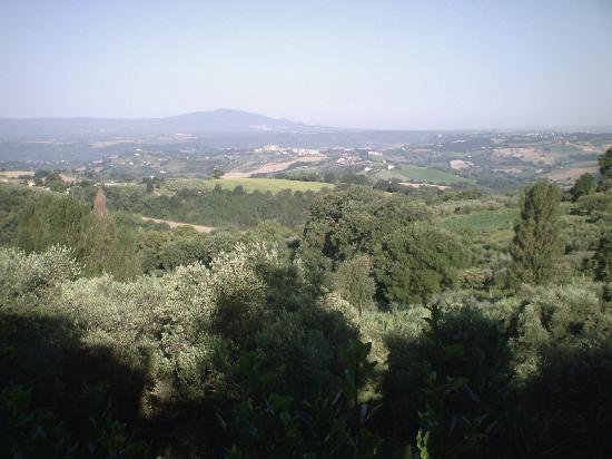 Casale Santa Brigida: Art Monastery Guesthouse: countryside towards Calvi