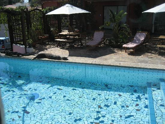 Rivendell Guest House: pool at rivendell