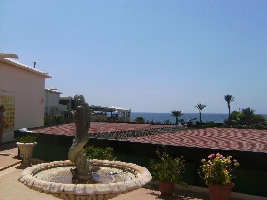 Asterias Beach Hotel: view from our family room on ground floor