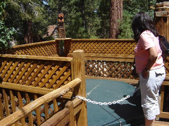 Big Bear Vacations: Jacuzzi on the Front Deck