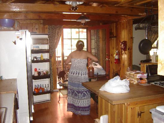 Big Bear Vacations: Kitchen