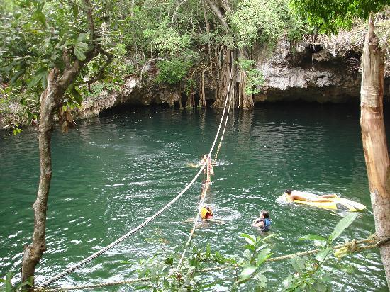 Selvatica: could have spent entire afternoon at the cenote - what a blast!