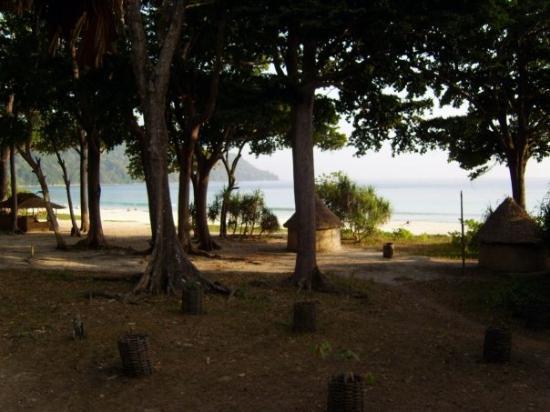 Radhanagar Beach: nice view on beach no7