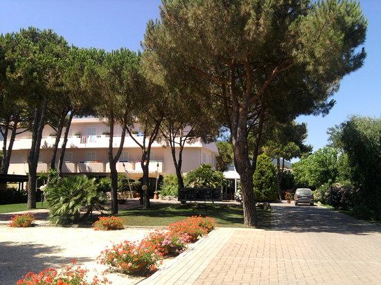 Hotel Dei Coralli: entrata hotel