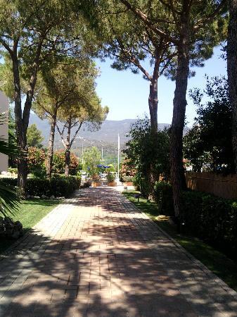 Hotel Dei Coralli: giardino