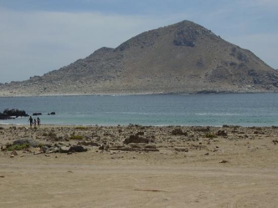 Chanaral, Chili : Isla de Pan de Azucar