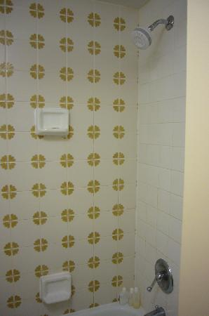 Quality Inn Cedar Point: Design tile in shower