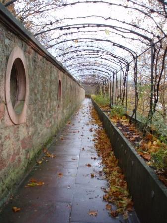 Aschaffenburg ภาพถ่าย