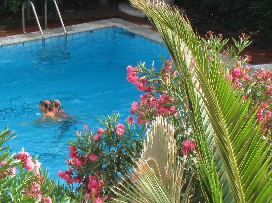 Lido Di Camaiore, Ιταλία: The pool