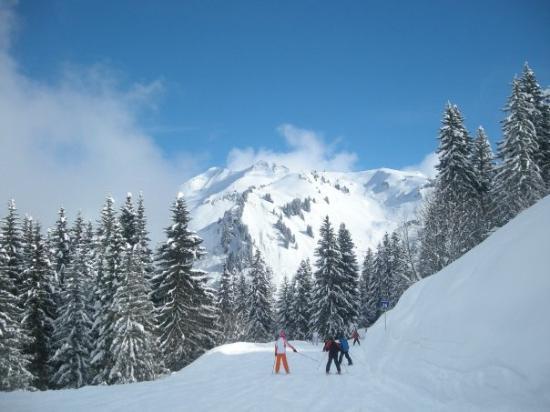 Les Gets, ฝรั่งเศส: Laaksoon mentäessä sumu (pilvet) kuitenkin teki hiihtämisestä vähemmän hauskaa. Kuvassa näkyy Na