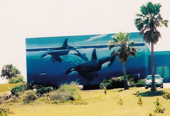 Whaling Wall: #1535 South Padre Island, Texas (2002)