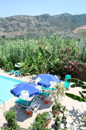 Dalyan Garden Pension: Pool, garden and mountains