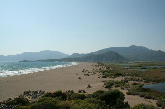 Dalyan Garden Pension: The beach