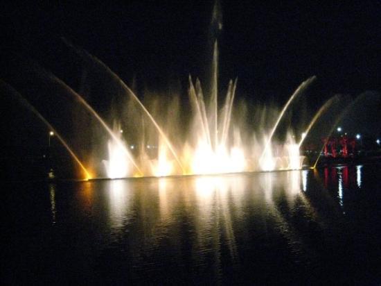 Casino near fort lauderdale florida
