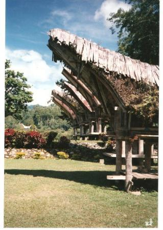 Sulawesi, อินโดนีเซีย: Indonesia Tana Toraja