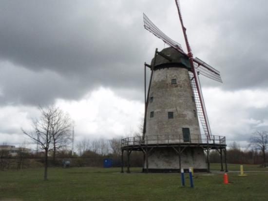 Bergen op Zoom Photo