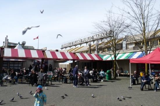 Granville Island Public Market: Pigeons e Seagulls all over the place.
