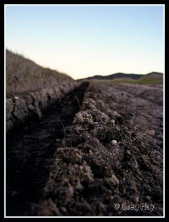 Mission Trails Regional Park: I feel dirty  [Mission Trails Park, San Diego]
