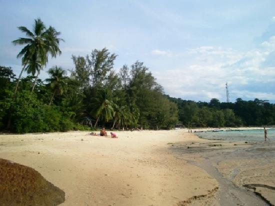 เปอร์เฮนเตียน ไอแลนด์ รีสอร์ท: Resortのビーチ奥よりResort側を望む