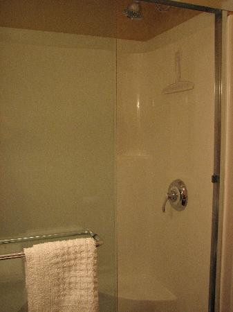 Bartlett Inn: Amazing Shower