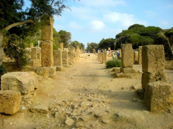 Tipasa, Algeriet: DSCN2960