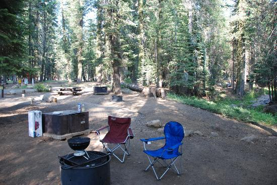 Stony Creek Campground: Our campsite, with a view of the firepit and the food locker.