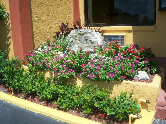 La Bella Oceanfront Inn: Garden In Front Of Lobby