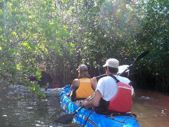 Fin Expeditions: Kayaking