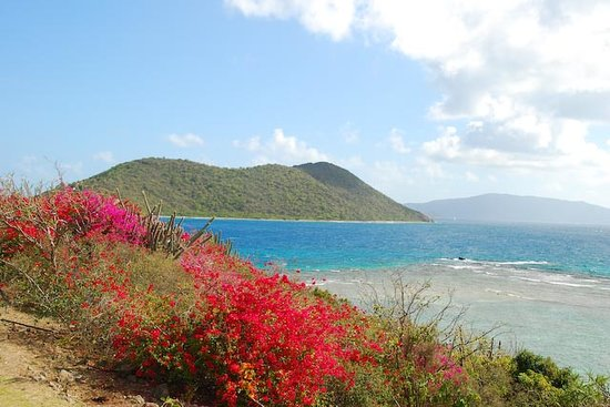 Virgin Gorda: Marina Cay, BVI