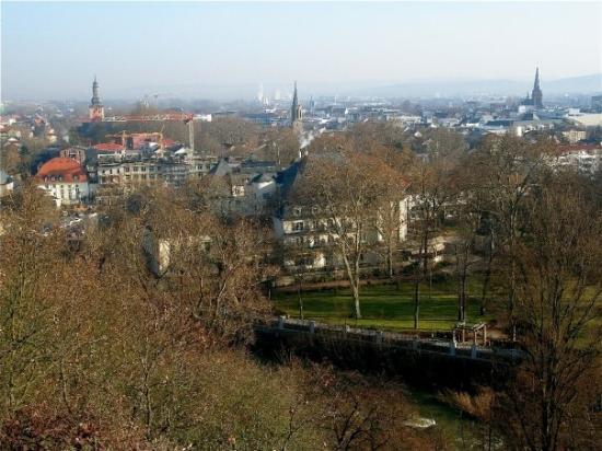 mature and küken Bad Kreuznach(Rhineland-Palatinate)