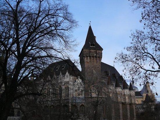 沃伊达奇城堡