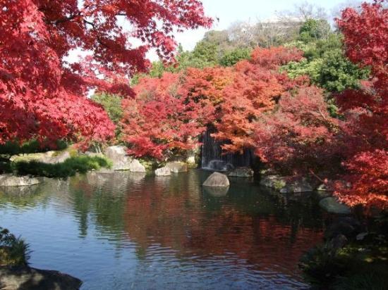 Himeji jardin kokoen photo de himeji hyogo prefecture for Jardin kokoen
