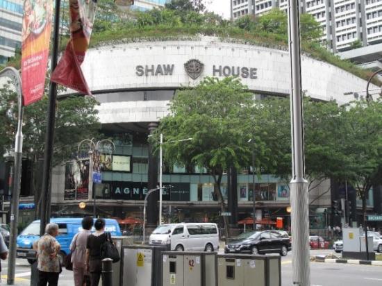 """ถนนออร์ชาร์ด: Bienvenidos a la calle Amazonas de Singapur xD!! Este sector es """"Orchard Road""""  el mas transitad"""