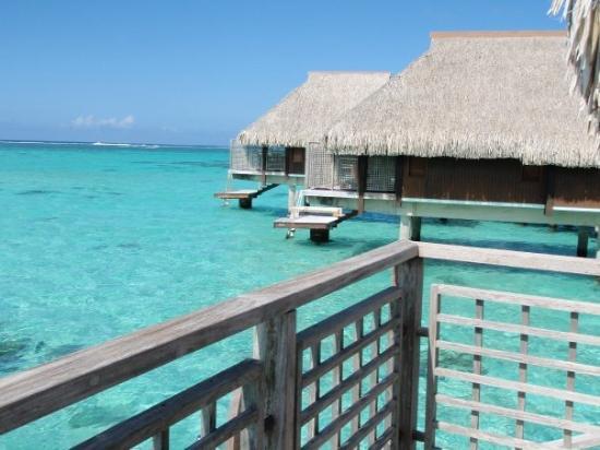 Sheraton Hotel Moorea Picture Of Moorea Society Islands