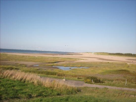 Beach In Holland Picture Of Hoek Van Holland South