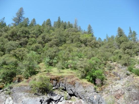 Colfax, CA, United States - Picture of Elk Grove, California ...