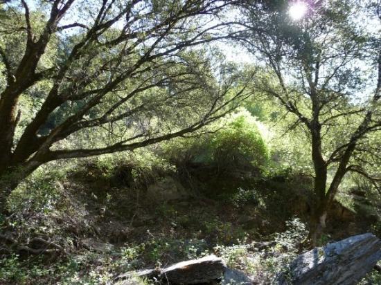Elk Grove, Kalifornien: Colfax, CA, United States