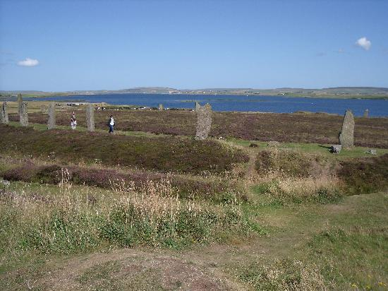 Orkneylodge