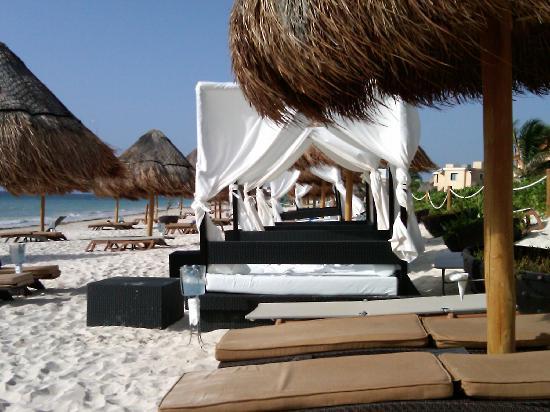 Ocean Coral & Turquesa: Cabanas on privilege beach